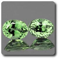 ZAFIRO VERDE . 2 piezas. 0.78 cts. VVS1. Ceilán, Sri Lanka