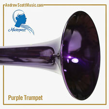 Trumpet, New, Purple and Silver with Case & Oil, Masterpiece, 12 Month Warranty