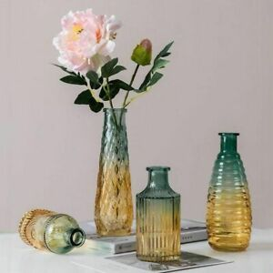Gradient Glass Vase Home Dried Flower Tabletop Room Decor Transparent Plant Pot