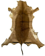 African Impala Antelope Hide Deerskin Buckskin Use For Decor, Rug Or Crafts