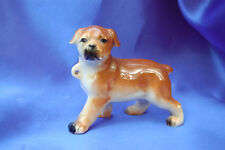 vintage porcelain Boxer puppy with loop Bully Nice  dog