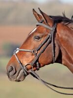 Shires Phoenix Figure-8 Jumping Bridle Fancy-Stitched with Rubber Grip Reins