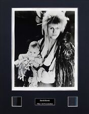 Labyrinth Signed Photo Film Cell Presentation