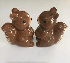 Squirrel Salt & Pepper Set Free Shipping
