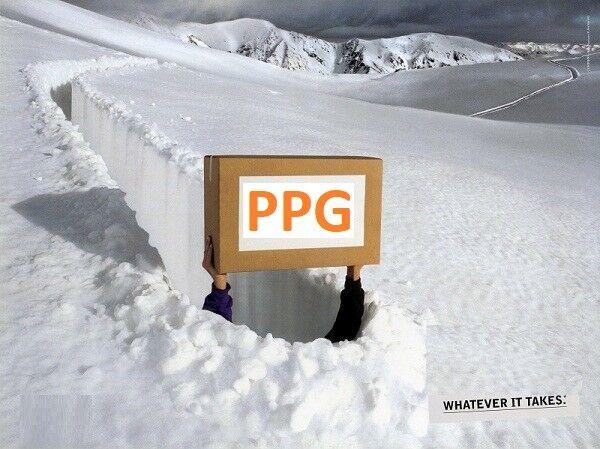 PPGTRANSPRINT