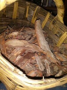 GENUINE OZARK MOUNTAINS Sassafras Root Bark FRESH!HAND DUG & SKINNED PER ORDER.