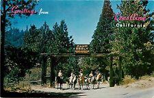 Vintage Postcard; Crestline CA Camp Seeley Folks on Horses, San Bernardino Mts.