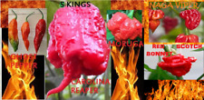 COMBO Carolina Reaper Naga Viper Red Ghost Moruga Red Scotch Bonnet 10 Seeds HOT