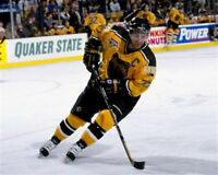 Ray Bourque  Boston Bruins 8x10 Photo
