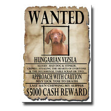 HUNGARIAN VIZSLA Wanted Poster FRIDGE MAGNET New DOG