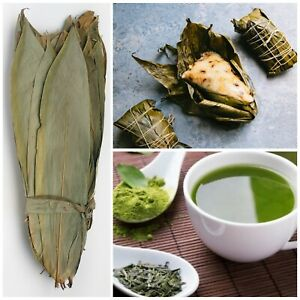 Dried BAMBOO LEAVES natural for Zongzi Sticky Rice Dumpling 100%Ceylon 50 Leaves