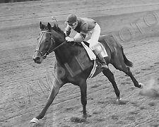 CITATION 1948 TRIPLE CROWN WINNER EDDIE ARCARO UP 8X10 HORSE RACING PHOTO