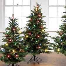 745 Tip 300 Multi 35 G40 Lights 5' PRE-LIT TREE M3600251 Raz Christmas Decor NEW
