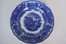 Antique Flo Blue, Non Pariel pattern from England