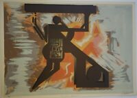 Serigraph by Ezequiel Suárez ¨Producciones Bauhous¨original signed by the artist
