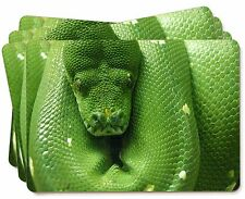Green Tree Python Snake Picture Placemats in Gift Box, AR-S1P