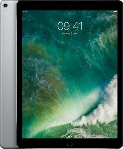 APPLE iPad Pro 2. Gen 12,9 Zoll 256GB Wi-Fi + Cellular Tablet spacegrau wie NEU