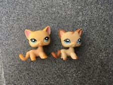 Littlest Pet Shop Toy LPS #1024 #339 Yellow Shorthair Doll Cute Cat Kitty