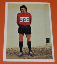 204 P. BIANIC STADE RENNES ROAZHON AGEDUCATIFS FOOTBALL 1973-1974 73-74 PANINI