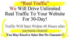 Google SEO: Drive Genuine Real Traffic To Your blog or website for 30 days