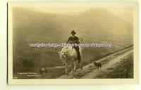 an0122 - A Mountain Shepherd on Horseback, with his Hound - postcard