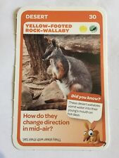 Taronga Zoo Woolworths Aussie Animal Card #30 Yellow Footed Rock Wallaby
