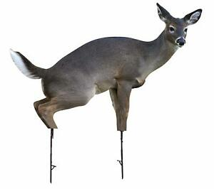 Estrus Betty (Peeing Doe) by Montana Decoy Deer Hunting, Decoy, Whitetail Bucks