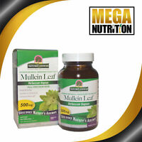 Nature's Answer Mullein Leaf 500mg 90 Veg Caps | Respiratory Health Throat Cough