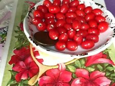 Goji Berries beads, Vintage Glass beads, Goji earrings, Goji berries, Red #B100B