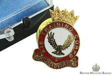 Air Training Corps ATC Veterans Modern Lapel Badge & Presentation Box - RAF