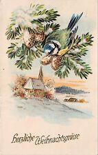 BG14817 weihnachten christmas fir branch bird  germany