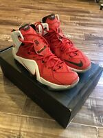 Lebron 12 Heart Of A Lion Size 11.5 Very Good Condition