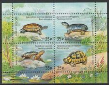 Russia 2017 Fauna Animals Turtles MNH block
