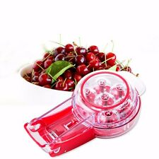 Cherry and Olive Core Pitter Remove Tool Pit Fruit Kitchen Gadget