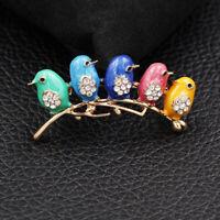 Betsey Johnso Enamel Crystal Cute Five Little Bird Charm Animal Brooch Pin Gift