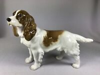 HUTSCHENREUTHER (GERMANY) PORCELAIN FIGURINE OF A STANDING COCKER SPANIEL DOG