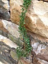Schlingpflanze Blattgirlande - Kunstblume - 122cm