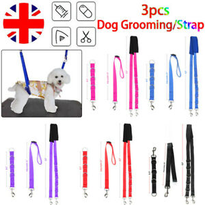 3PCS DOG GROOMING HARNESS STRAP NOOSE RESTRAINT BELLY PAD 5 COLOURS Nylon UK