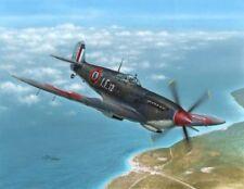 Special Hobby 1/48 Seafire Mk.III 'Aeronavale & Irish Air Corps' # 48138