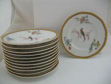 Theodore Haviland Limoges, set of 12 Plates: Eden pattern, Bird of Paradise