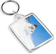 Snowmobile Jump Keyring Snow Mobile Vehicle Ski Fun Snowboarding Gift #15910