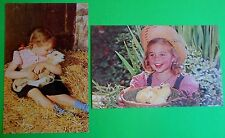 Girl/Lamb & Girl/Straw Hat/Baby Chicks-2 Mid Modern Real Photo Chrome Postcards