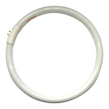 Daylight Company Naturalight Energy Saving Circular Tube / Bulb 28w D12000