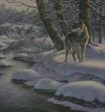 "James Meger "" Hidden Game Timberwolves ""(#196 of 500 )AP $400 Value  MINT (1990"