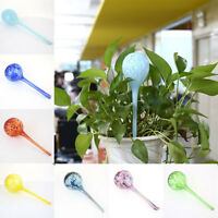 Glass Globes Bonsai Plants Automatic Watering Device Garden Irrigation Supplies