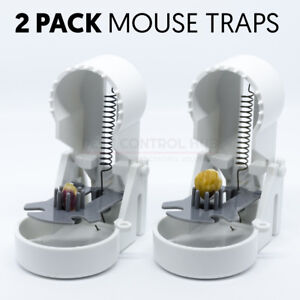 Mouse Trap for Mice Rapid Reusable Humane Kill Traps Easy Set Bait by Mastertrap