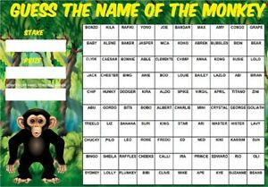 GUESS THE NAME OF MONKEY SCRATCHCARD 100 Square Players Charity Race Night Game