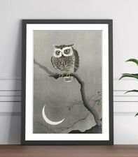 COOL OWL FRAMED WALL ART PICTURE PRINT ARTWORK POSTER JAPANESE 4 SIZES