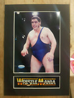 Andre The Giant Display Mounted Photograph Wrestler A4 Bevel Retro Memorabilia