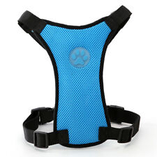 Blue Mesh Puppy Dog Vehicle Car Seat Belt Harness Cute Paw Print Small Adjust